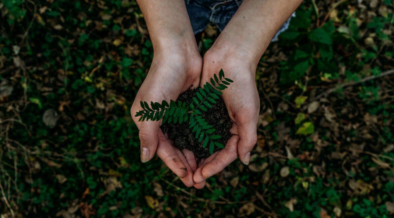 sostenibilidad, innovación e igualdad